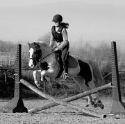 13th Nov 2011 - Jumping lesson