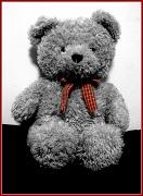 14th Nov 2011 - Dufton Ted
