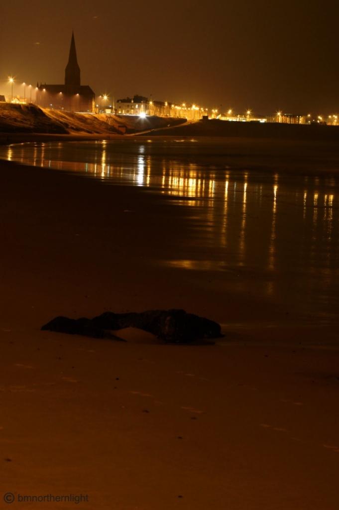 Longsands illuminated by bmnorthernlight