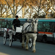 18th Nov 2011 - Just for fun: Transports in Paris