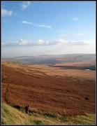 18th Nov 2011 - Scammonden Moor