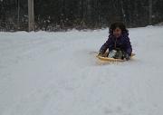 23rd Nov 2011 - Snow day!