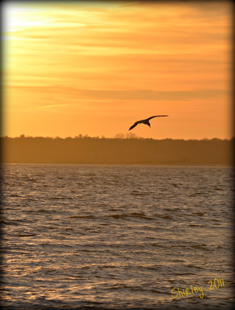 Cape Cod sunset by mjmaven
