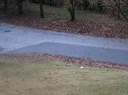 29th Nov 2011 - Leaves by Road 11.29.11