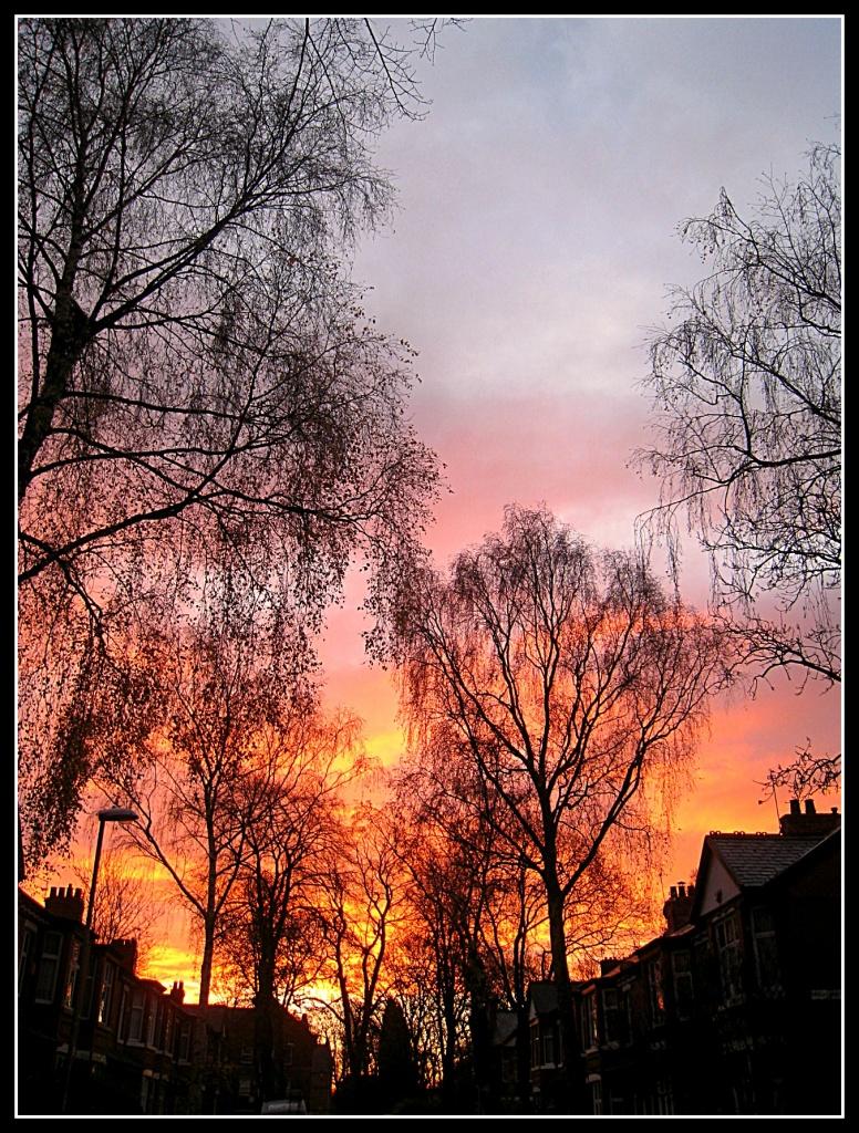 Sunrise by sarahhorsfall