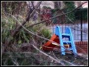 """3rd Dec 2011 - """"Old ladder"""""""