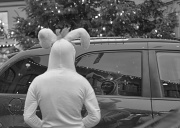 3rd Dec 2011 - This Rabbit Arrived To The Wrong Holiday...