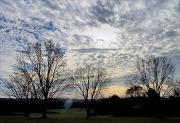 4th Dec 2011 - Sunday Morning