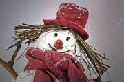 7th Dec 2011 - Snowman