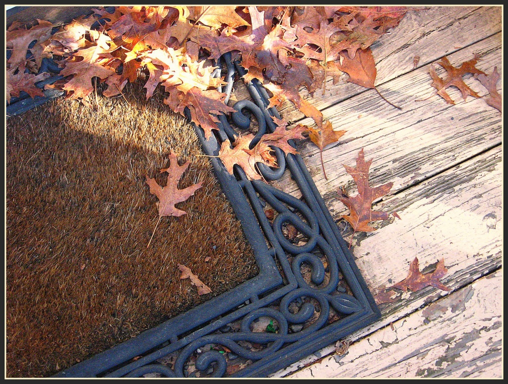 Leaves on the Welcome Mat by olivetreeann