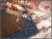 9th Dec 2011 - Leaves on the Welcome Mat