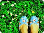 11th Dec 2011 - New shoes!