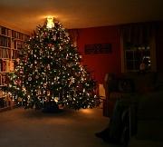 12th Dec 2011 - My View Tonight