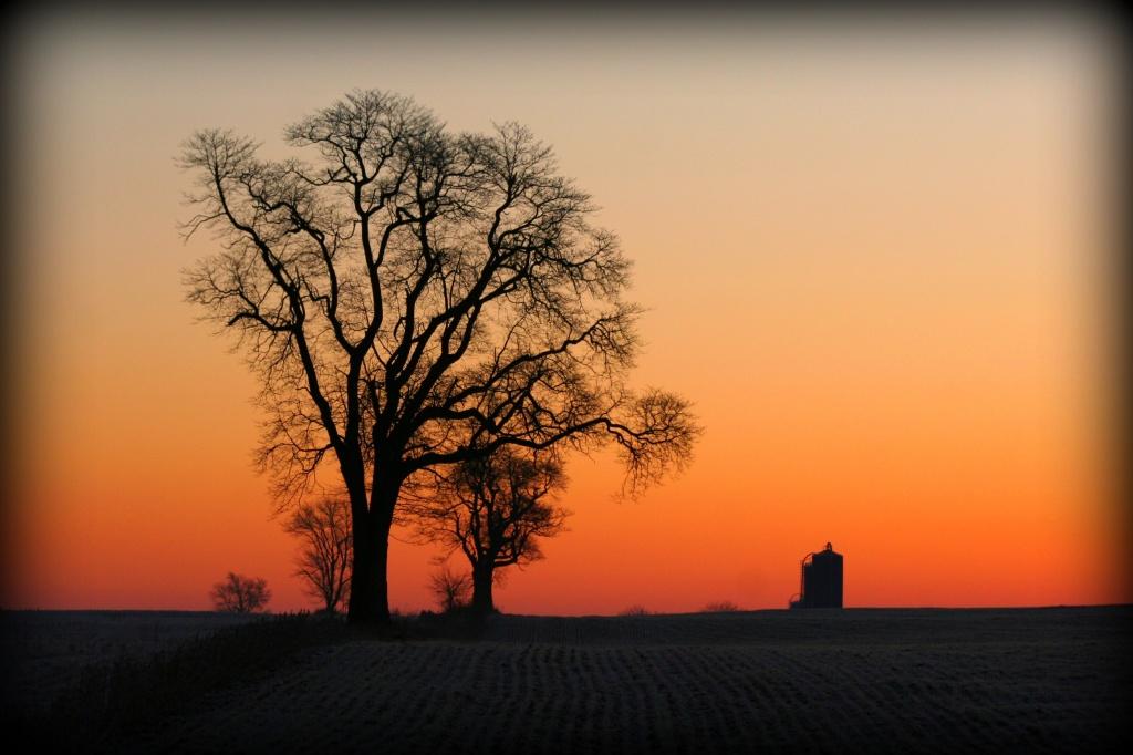 Crisp Morning Sun by digitalrn