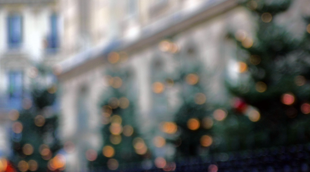 Just for fun: Christmas trees by parisouailleurs