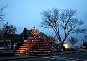 15th Dec 2011 - Lobster Trap Christmas Tree