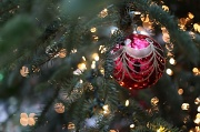 15th Dec 2011 - 10 More Days Until Christmas!