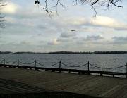 18th Dec 2011 - by the lake, final take - sundown