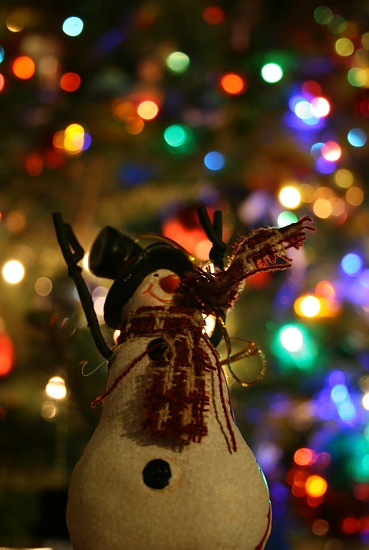 Frosty and Bokeh by kerristephens