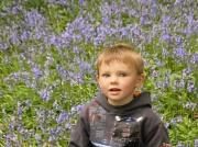 16th May 2010 - Tom plus blue bells.