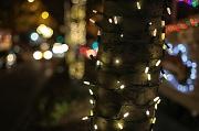 25th Dec 2011 - Christmas Day