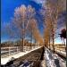 Wintery Driveway by exposure4u
