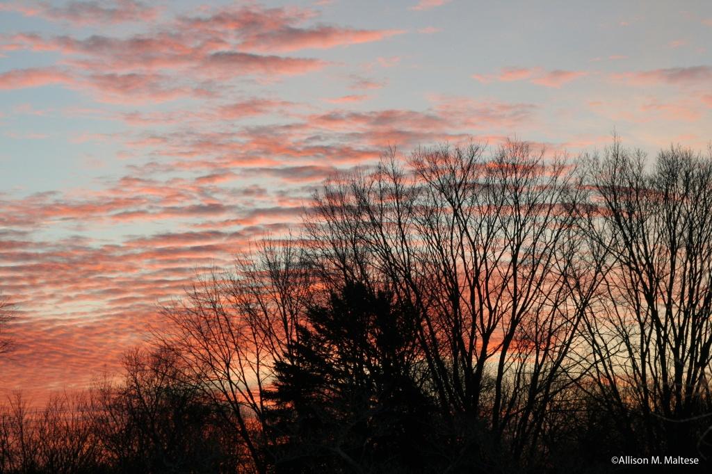Sunrise by falcon11