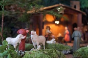 24th Dec 2011 - While Shepherds Watched Their Flocks By Night