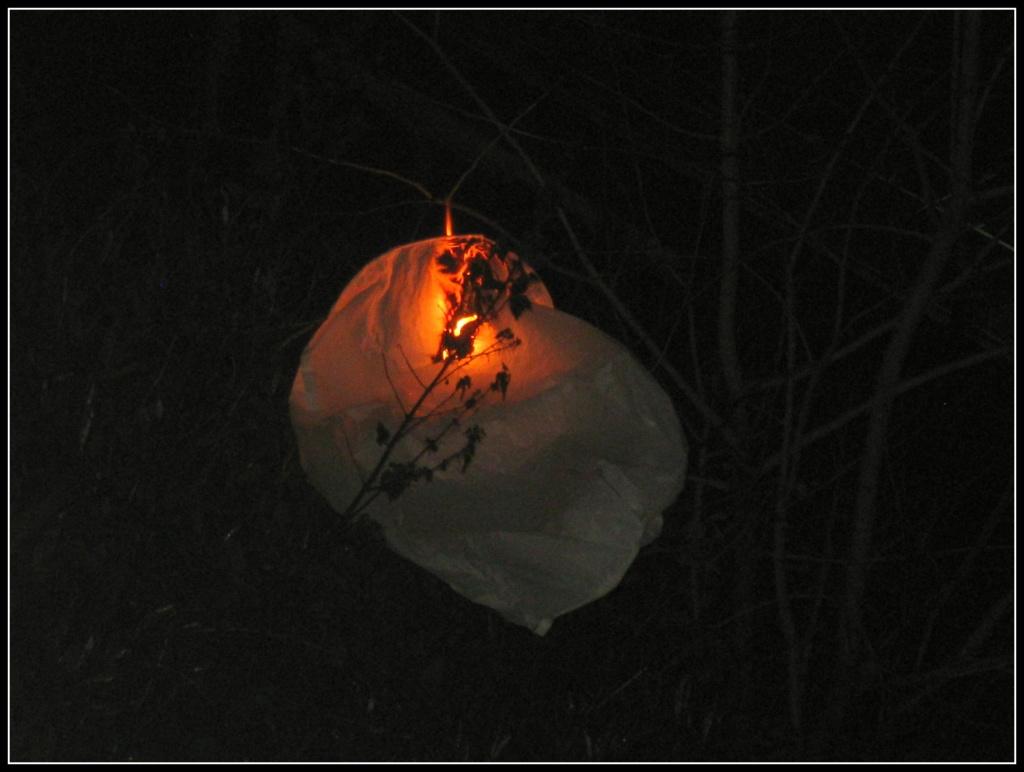 Chinese lantern FAIL! by sarahhorsfall