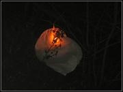 30th Dec 2011 - Chinese lantern FAIL!