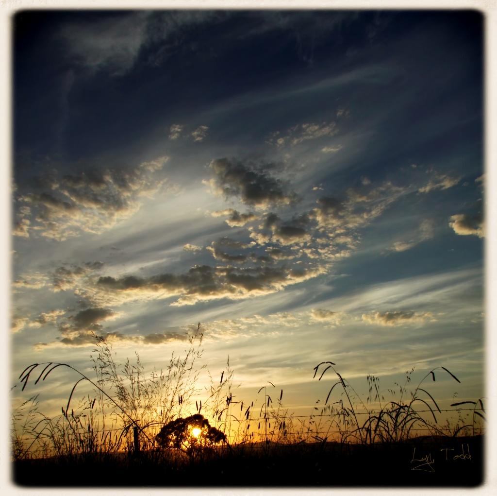 summer sunset by ltodd