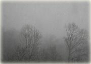 3rd Jan 2012 - Snow squall