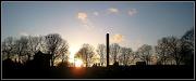 2nd Jan 2012 - Tree & chimney silhouettes