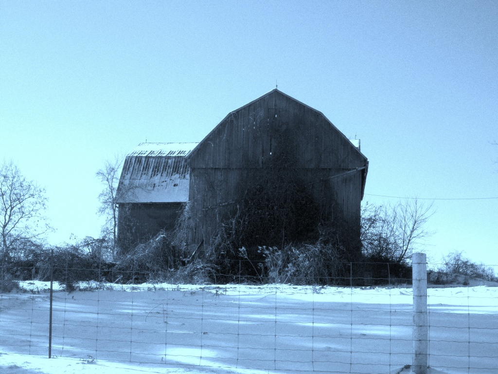 Old barn by bruni