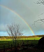 4th Jan 2012 - rainbow