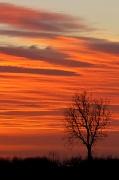 4th Jan 2012 - beautiful dawn