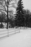 5th Jan 2012 - Fence