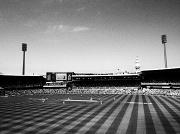 6th Jan 2012 - Sydney Cricket Ground