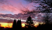 6th Jan 2012 - Pink and blue sunset