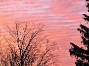 7th Jan 2012 - Sky ripples.