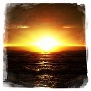 8th Jan 2012 - Sunburst