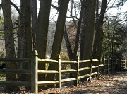 8th Jan 2012 - Another fence