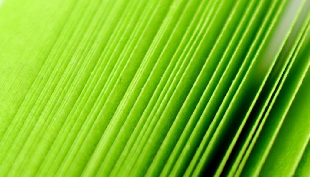 Green. by naomi