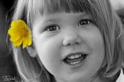 10th Jan 2012 - Yellow flower