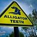 Alligator teeth by vikdaddy