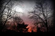 10th Jan 2012 - Fiery sunset