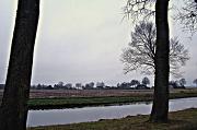 12th Jan 2012 - rural landscape