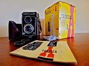 12th Jan 2012 - Yashica Yellow