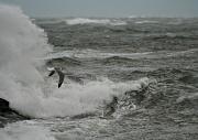 13th Jan 2012 - Dark and Stormy Seas