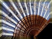 13th Jan 2012 - fan